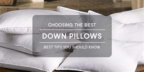bed pillows reviews best bed pillows reviews bed pillow reviews home design