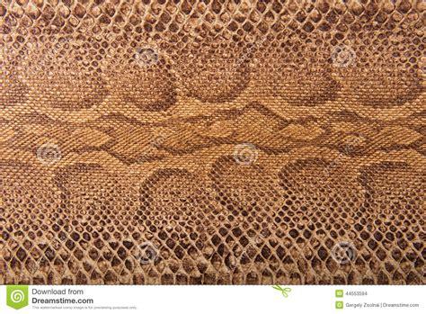 Brown Pattern Snake | brown snake pattern imitation background stock photo