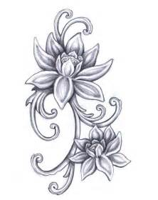 Draw A Lotus Flower 25 Best Ideas About Lotus Flower Drawings On