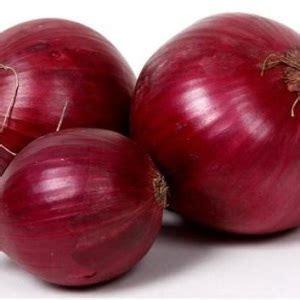 Bibit Bawang Merah Sekarang benih bawang merah bibitbunga