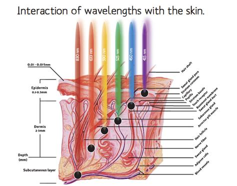 does led light therapy work how does led light therapy work