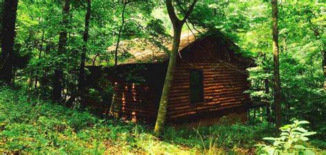 Cabins In Springs Arkansas With Tub by Lazee Daze Log Cabin Resort Eurkea Springs Arkansas