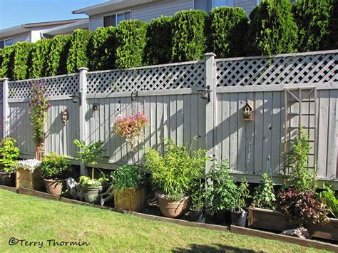 fencing ideas for backyards best 25 diy backyard fence ideas on diy fence outdoor seating areas and fence gate