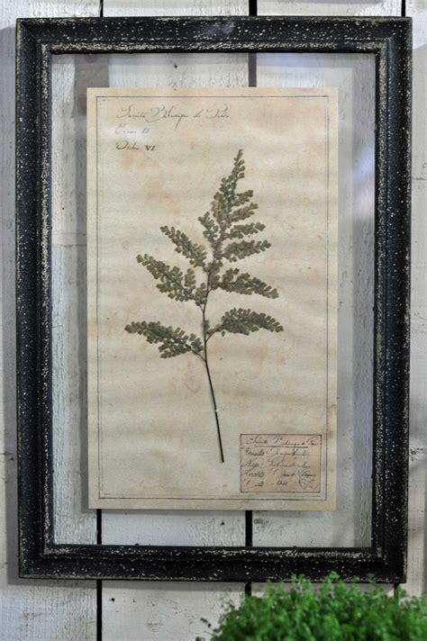 in framed artwork framed pressed botanical artwork home barn vintage