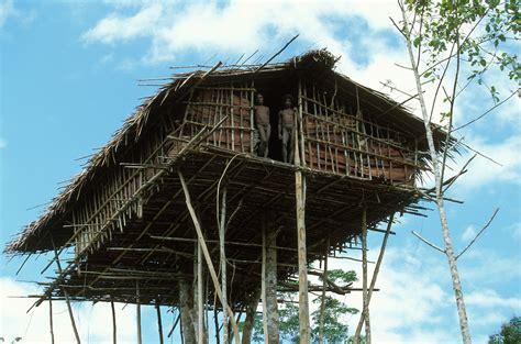 korowai tree houses korowai tree houses in new guinea indonesia best house