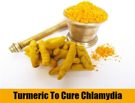 8 cures for chlamydia how to cure chlamydia
