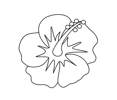 coloring page hibiscus flower hibiscus coloring download hibiscus coloring