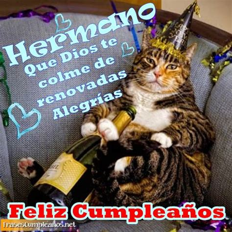 imagenes alegres de feliz cumpleaños felicidades a un hermano con un gatito y vino