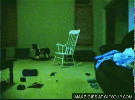imagenes gif locas ellen degeneres comparte casa con fantasma taringa