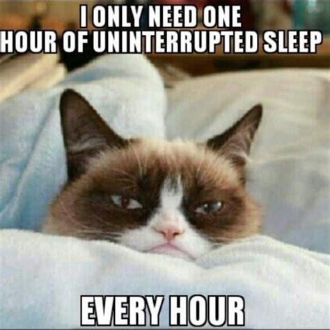 Need Sleep Meme - 30 most funny sleeping meme photos you have ever seen