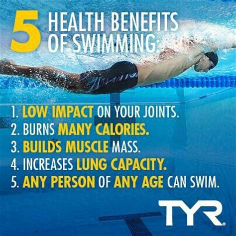 swim wombat swim books 5 reasons why swimming should be part of your workout