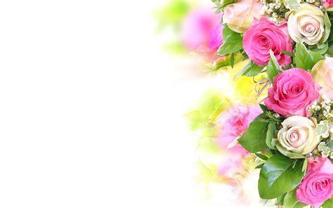 flower hd images with happy new year обои 1280x800 красивые цветы белые розы цветок букет розовые для рабочего стола картинки