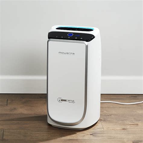 Rowenta Intense Pure Air Purifier   Reviews   Crate and Barrel