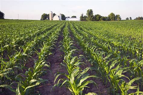 Agricultural Finance From Crops To Land Water And Ebook E Book row crop farm loans row crop financing