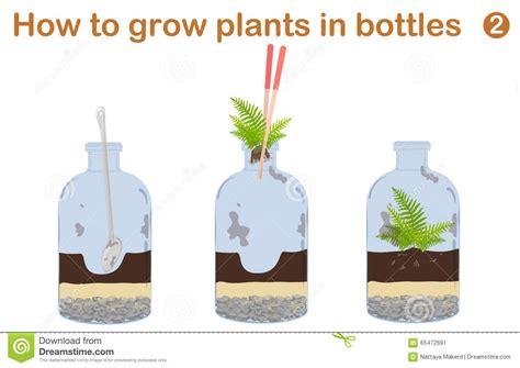 diy plant watering bottle newhairstylesformen2014 com