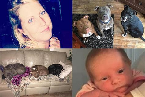 baby killed by 3 week baby killed by pit bull after being left alone with it for 5 minutes pets