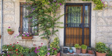 fiori da casa 5 piante da appartamento per decorare la tua casa