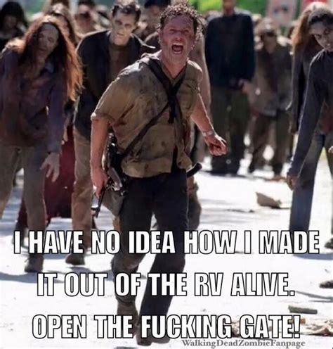 Grimes Meme - 17 best images about rick grimes funny memes on pinterest