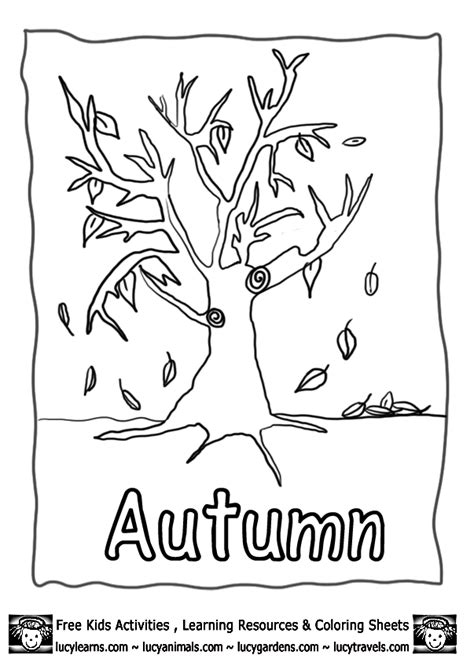 printable coloring pages autumn autumn colouring pages fall lucy learns http www