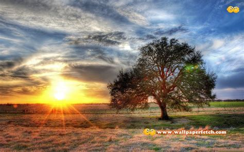 cool nature wallpaper backgrounds cool nature backgrounds wallpaper cave
