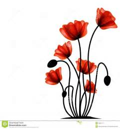 abstract red poppy royalty free stock photography image