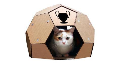 tutorial membuat tempat tidur kucing kreasi rumah kucing dari kardus lifestyle liputan6 com