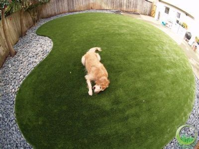 dog yard option dog proof dog proof grass backyard 28 images dog yard option dog