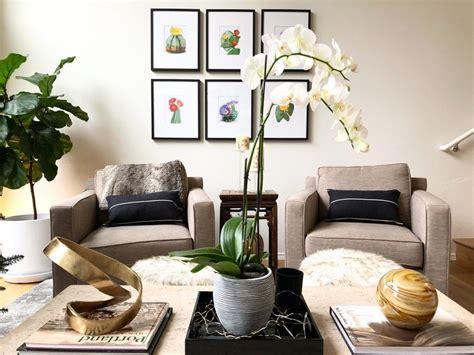 menyejukkan  inspirasi tanaman hias  ruang tamu