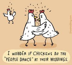 Backyard Chickens Jokes 1000 Images About It S All About Chickens On