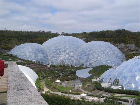 Shed In The World by The Top Reasons Why You Need A Greenhouse Shed