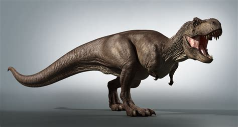 zbrush tutorial t rex t rex zbrush 3d obj