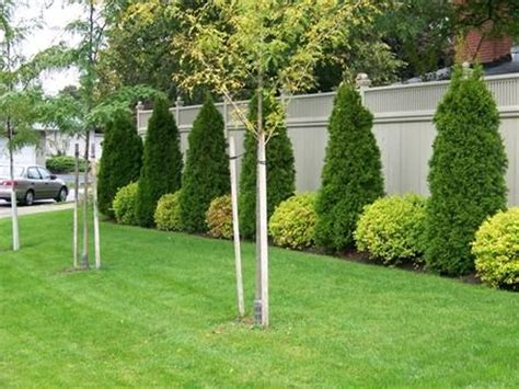 Stunning Privacy Fence Line Landscaping Ideas 38 Fence Line Garden Ideas