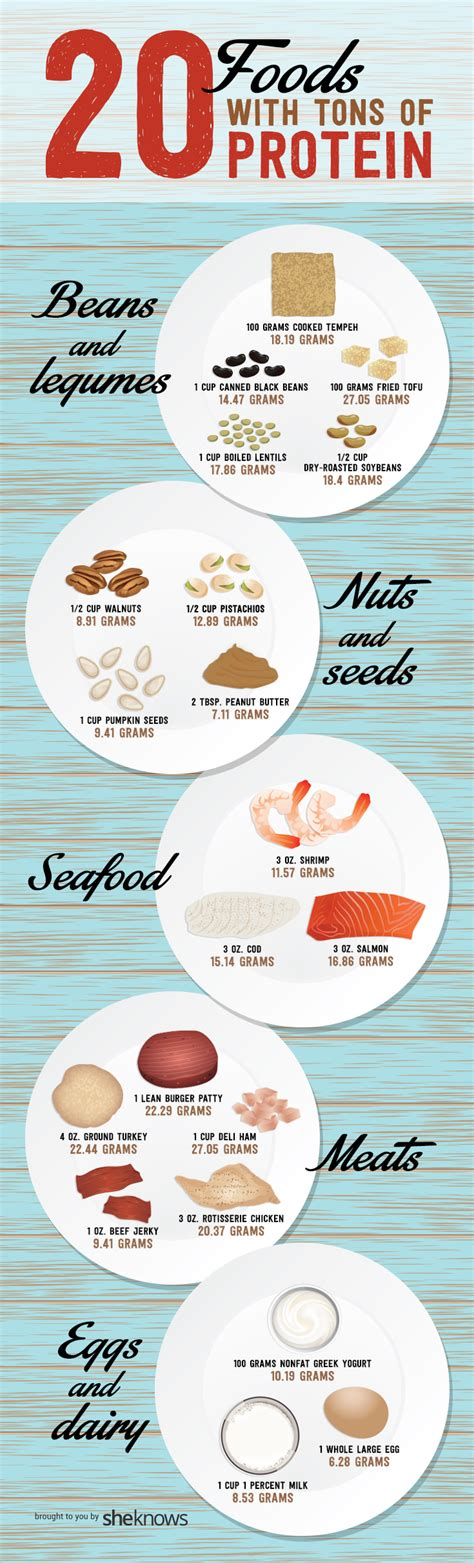 protein filled foods 20 protein filled foods to snack on infographic