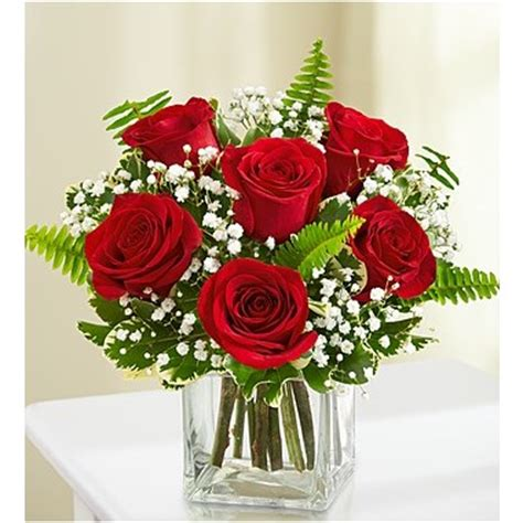 1 800 flowers® 6 stems red love's embrace™ roses | 1 800