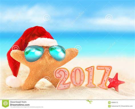 imagenes de feliz navidad en la playa feliz a 241 o nuevo estrellas de mar en el sombrero de santa