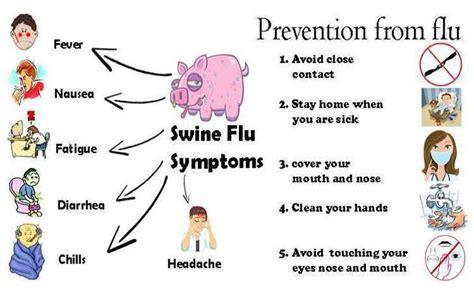 flu symptoms h1n1 virus symptoms www pixshark images galleries with a bite