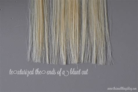 about hair cut head point picture beauty 101 tools used in a haircut the small things blog