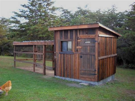 rural rehatch backyard chickens community