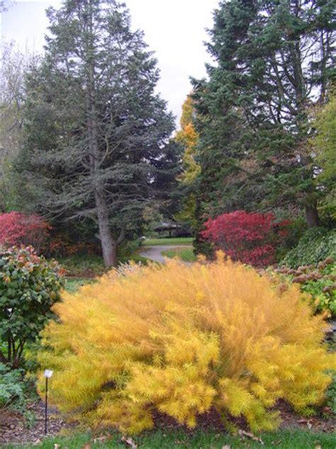 Rockford Botanical Gardens by Klehm Arboretum Botanic Garden Rockford Il Hours