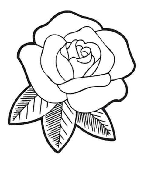 to create rose and heart drawing drawinfo easy outline how