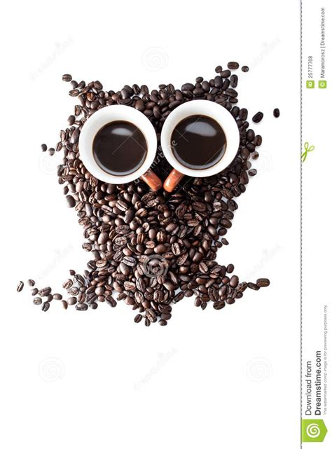 Conteptual Eule Gebildet Mit Kaffeebohnen Lizenzfreie Stockfotos   Bild: 25777708