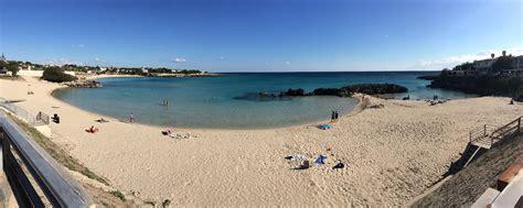 gabbiano taranto spiaggia la fontana popolopulsanese pulsano