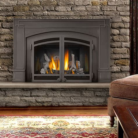 Napolean Fireplace Inserts by Fireplaces Woodstoves Hearth Memes