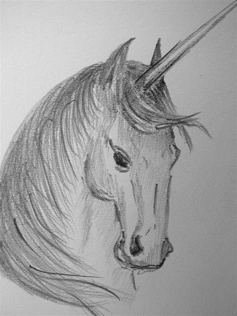 detailed pencil drawings unicorn sketch pencil on my sketch pad 6 x 9 cm tiny