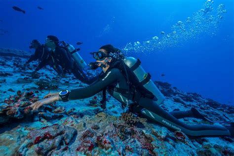 scuba diving in fakarava north topdive