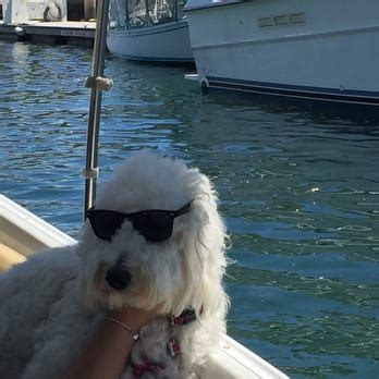 duffy boat rentals long beach price pelican joe s boat rentals 51 photos boat charters