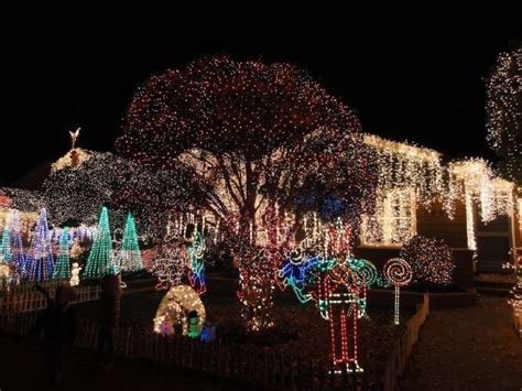 san carlos christmas lights eucalytus 1900 where to see the best lights in the bay area sfgate