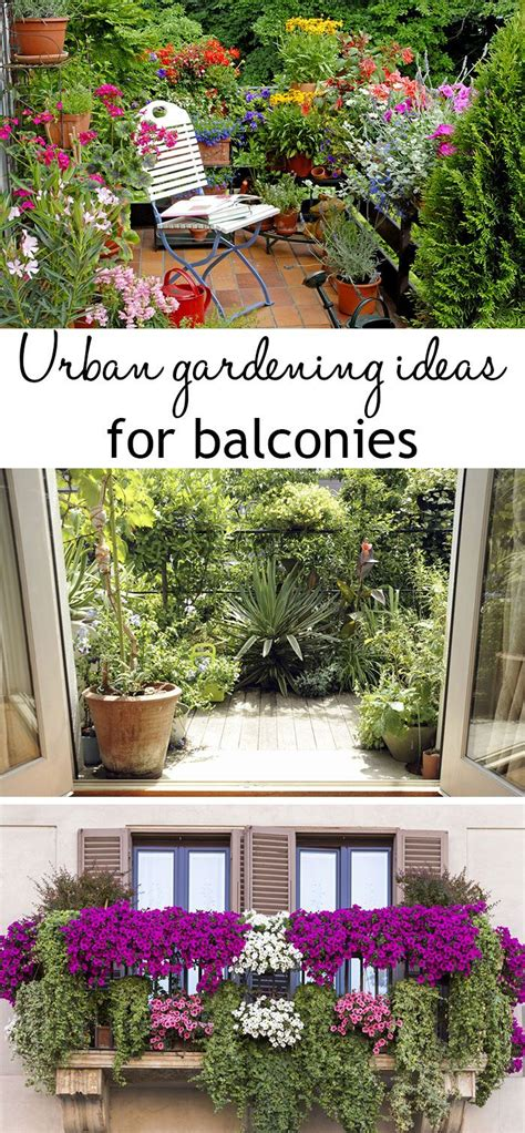 Apartment Balcony Planters by Best 25 Balcony Garden Ideas On