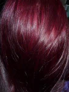 cherry hair color ion black cherry hair color brown hairs