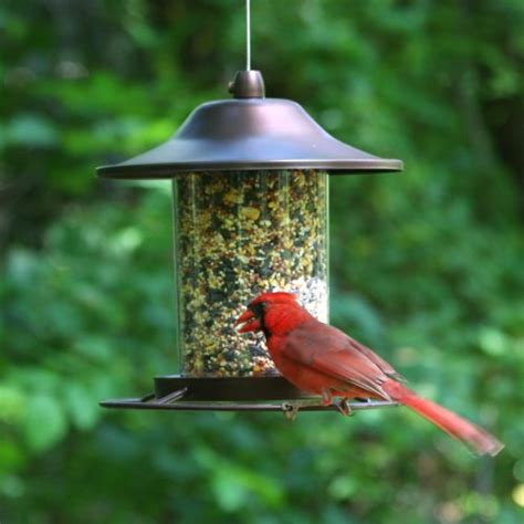 Small Bird Feeders Pet 312 Panorama Bird Feeder Small Bird Feeder